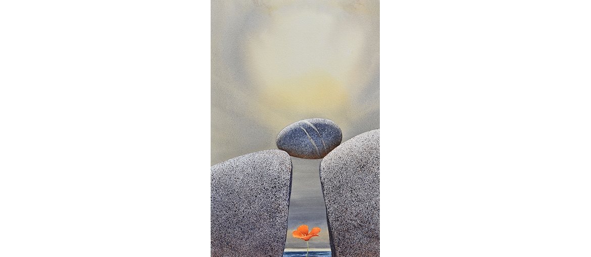 Northern Poppy And Stone